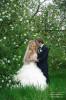 Свадебные фотосеты Илья и Галина